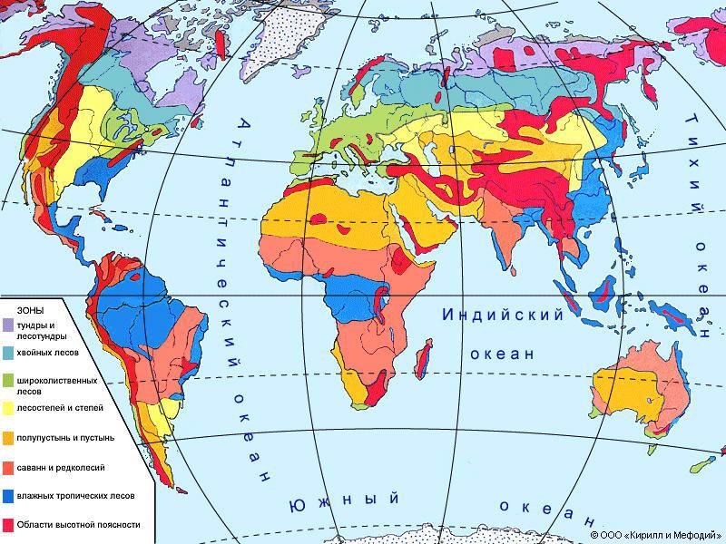 Население Земли  Википедия