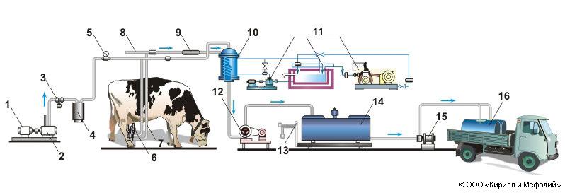 Схема доильной установки с