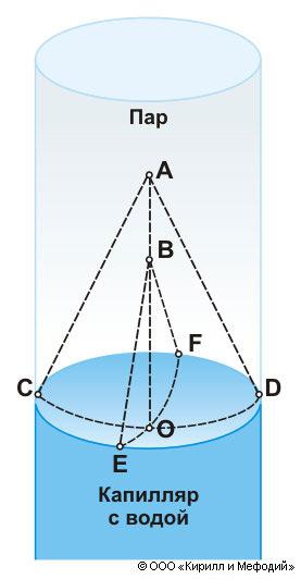 Лапласа закон (схема)