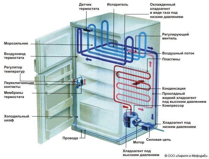 Схема строения холодильника.