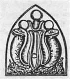 Змея 2 (символ)