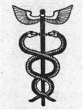 Змея 5 (символ)