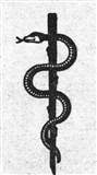 Змея 6 (символ)