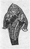 Змея 8 (символ)